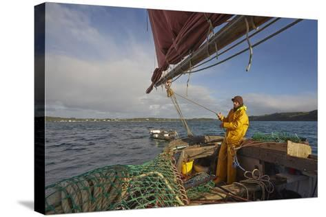 Sailing an Oyster Dredger, in Carrick Roads, the Estuary of the River Fal, Near Falmouth, Cornwall-Nigel Hicks-Stretched Canvas Print