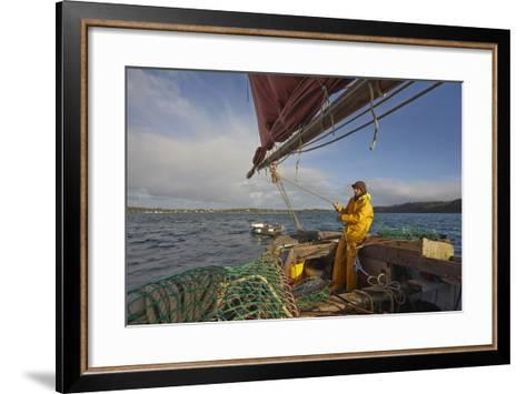 Sailing an Oyster Dredger, in Carrick Roads, the Estuary of the River Fal, Near Falmouth, Cornwall-Nigel Hicks-Framed Art Print