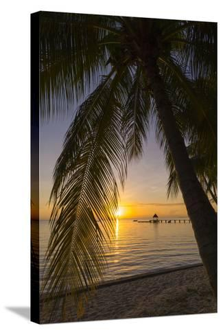 Over-The-Water Bungalows Framed by at Palm Tree at a Tropical Resort at Sunset-Sergio Pitamitz-Stretched Canvas Print