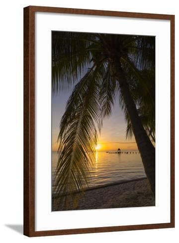 Over-The-Water Bungalows Framed by at Palm Tree at a Tropical Resort at Sunset-Sergio Pitamitz-Framed Art Print