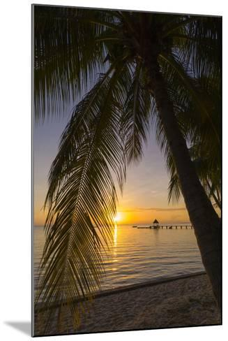 Over-The-Water Bungalows Framed by at Palm Tree at a Tropical Resort at Sunset-Sergio Pitamitz-Mounted Photographic Print