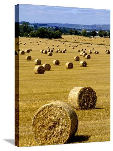 Bales of Hay in County Carlow, Ireland-Chris Hill-Stretched Canvas Print