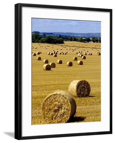 Bales of Hay in County Carlow, Ireland-Chris Hill-Framed Art Print