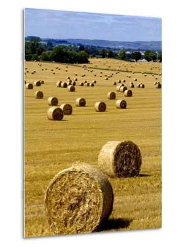 Bales of Hay in County Carlow, Ireland-Chris Hill-Metal Print