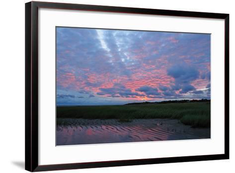 Sunrise at the Payne's Creek Intertidal Zone-Darlyne A^ Murawski-Framed Art Print