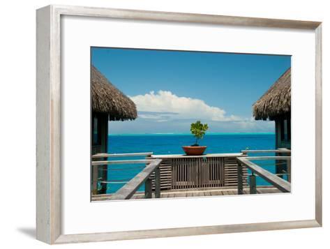 A Plant in a Walkway Between Cottages on Bora Bora-Karen Kasmauski-Framed Art Print