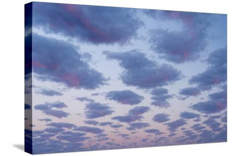Clouds over Port Lincoln, South Australia at Sunrise-Michael Melford-Stretched Canvas Print