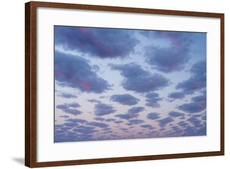 Clouds over Port Lincoln, South Australia at Sunrise-Michael Melford-Framed Art Print