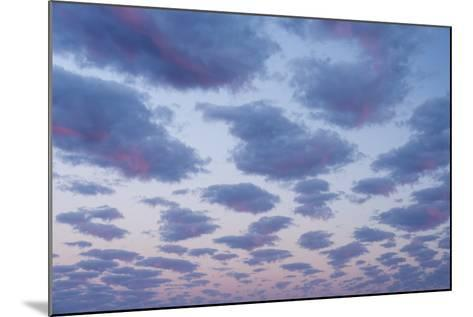 Clouds over Port Lincoln, South Australia at Sunrise-Michael Melford-Mounted Photographic Print