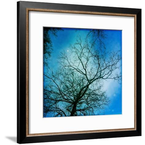 The Moon Behind a Bare Sycamore Tree-Skip Brown-Framed Art Print