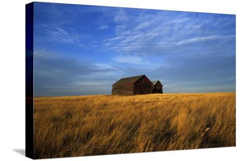 Old Wooden Barns in a Field-Aaron Huey-Stretched Canvas Print