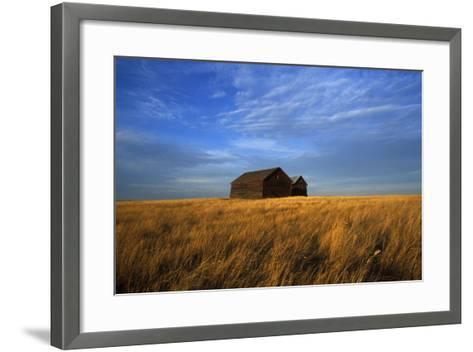 Old Wooden Barns in a Field-Aaron Huey-Framed Art Print