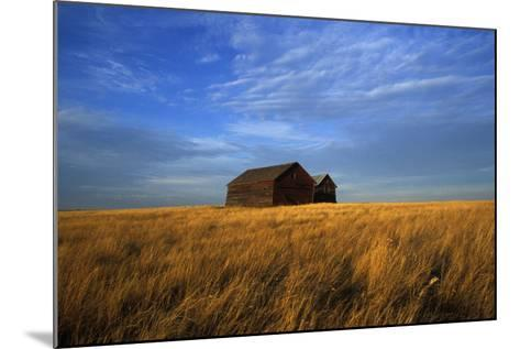 Old Wooden Barns in a Field-Aaron Huey-Mounted Photographic Print