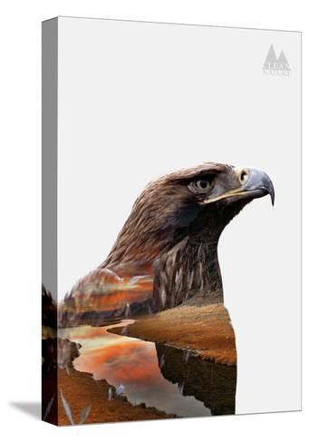 Eagle-PhotoINC-Stretched Canvas Print