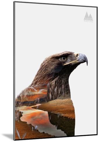 Eagle-PhotoINC-Mounted Art Print