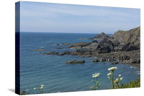 Rock Outcrops at Hartland Quay, North Cornwall, England, United Kingdom, Europe-James Emmerson-Stretched Canvas Print