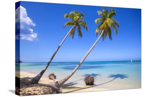 El Portillo Beach, Las Terrenas, Samana Peninsula, Dominican Republic, West Indies, Caribbean-Jane Sweeney-Stretched Canvas Print