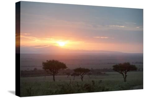 Masai Mara, Kenya, East Africa, Africa-Sergio Pitamitz-Stretched Canvas Print