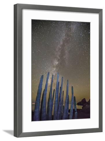 Night View of the Milky Way with Organ Pipe Cactus (Stenocereus Thurberi) in Foreground-Michael Nolan-Framed Art Print