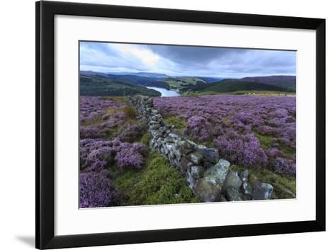 Heather Covered Bamford Moor-Eleanor Scriven-Framed Art Print