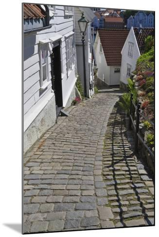 Steep Cobbled Street and White Wooden Houses-Eleanor Scriven-Mounted Photographic Print