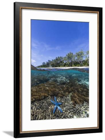 Above and Below View of Coral Reef and Sandy Beach on Jaco Island, Timor Sea, East Timor, Asia-Michael Nolan-Framed Art Print
