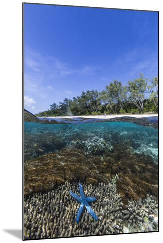 Above and Below View of Coral Reef and Sandy Beach on Jaco Island, Timor Sea, East Timor, Asia-Michael Nolan-Mounted Photographic Print