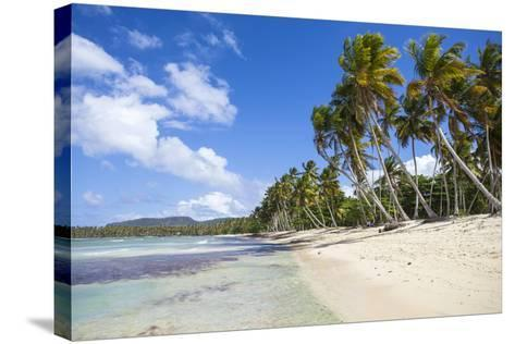 Playa Rincon, Samana Peninsula, Dominican Republic, West Indies, Caribbean, Central America-Jane Sweeney-Stretched Canvas Print