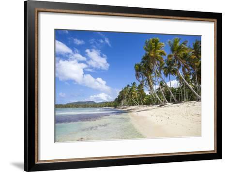 Playa Rincon, Samana Peninsula, Dominican Republic, West Indies, Caribbean, Central America-Jane Sweeney-Framed Art Print