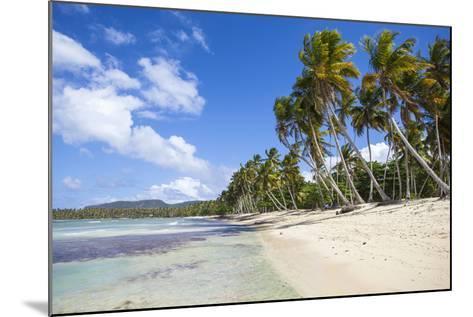 Playa Rincon, Samana Peninsula, Dominican Republic, West Indies, Caribbean, Central America-Jane Sweeney-Mounted Photographic Print