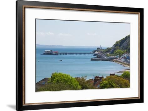 Mumbles Lighthouse, Mumbles Pier, Mumbles, Gower, Swansea, Wales, United Kingdom, Europe-Billy Stock-Framed Art Print