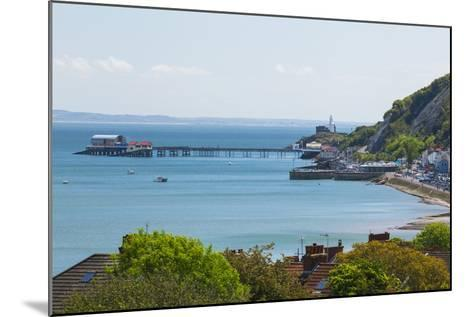 Mumbles Lighthouse, Mumbles Pier, Mumbles, Gower, Swansea, Wales, United Kingdom, Europe-Billy Stock-Mounted Photographic Print