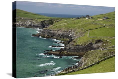Sheep Fences and Rock Walls Along the Dingle Peninsula-Michael Nolan-Stretched Canvas Print