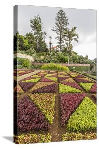 A View of the Botanical Gardens-Michael Nolan-Stretched Canvas Print