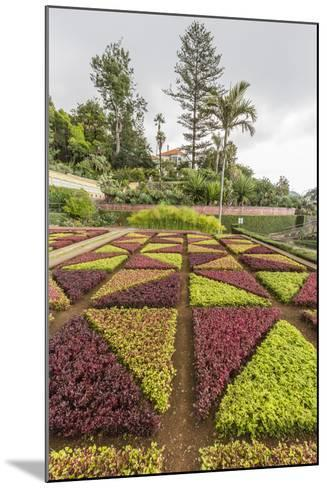 A View of the Botanical Gardens-Michael Nolan-Mounted Photographic Print