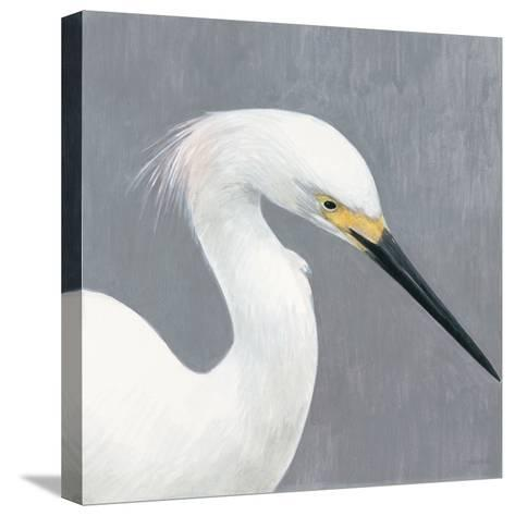 Seabird Thoughts 2-Norman Wyatt Jr^-Stretched Canvas Print