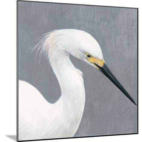 Seabird Thoughts 2-Norman Wyatt Jr^-Mounted Premium Giclee Print