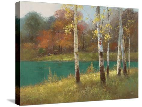 Autumn Birch--Stretched Canvas Print