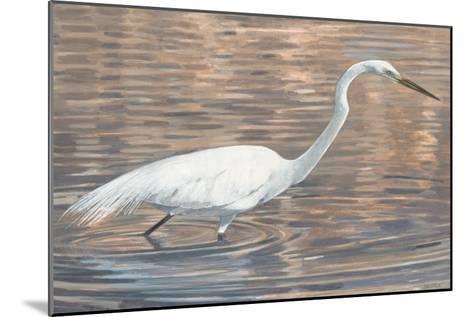 Wading Shore Bird-Norman Wyatt Jr^-Mounted Premium Giclee Print