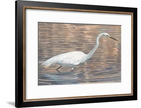 Wading Shore Bird-Norman Wyatt Jr^-Framed Art Print