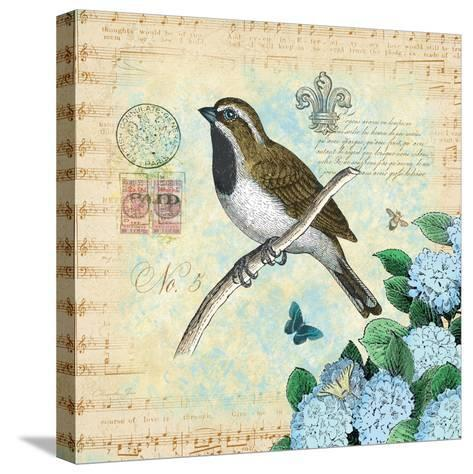 Hydrangea Songbird No. 5-Christopher James-Stretched Canvas Print