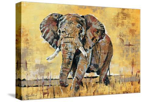 Safari Elephant-Madelaine Morris-Stretched Canvas Print
