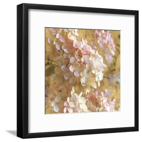 Gilded Hydrangea I-Sue Schlabach-Framed Art Print