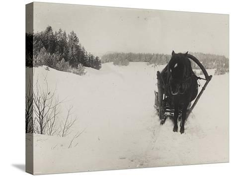 First World War: A Horse-Drawn Sleigh in the Snow--Stretched Canvas Print