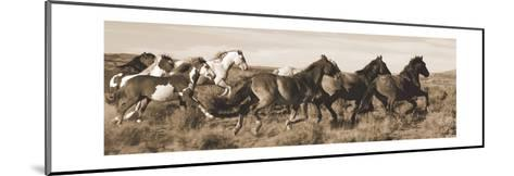 Wild Horses-Claude Steelman-Mounted Art Print