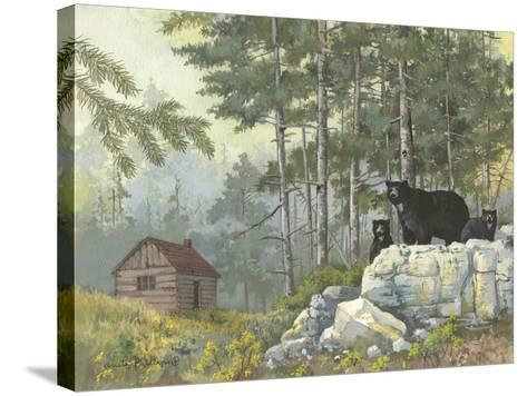 Bears Cabin-Anita Phillips-Stretched Canvas Print