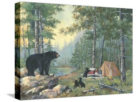 Bears Campsite-Anita Phillips-Stretched Canvas Print