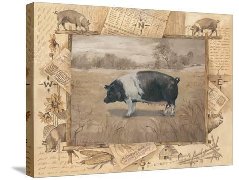 Pig-Anita Phillips-Stretched Canvas Print