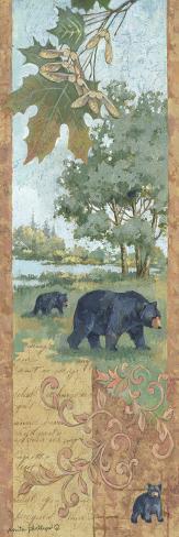 Homeward Bound-Anita Phillips-Stretched Canvas Print
