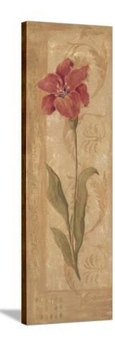 Evening Lily-Jo Moulton-Stretched Canvas Print